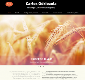 Nueva Web Carlos Odriozola